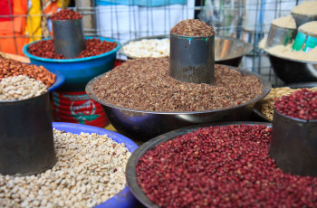 With a regular supply of quality and adapted seeds at affordable prices, farmers have seen their yields increase dramatically © Seth Lazar/Alamy Stock Photo