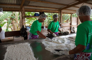 Workers shred, dry, then press coconut to make virgin coconut oil at a Women in Business Development model farm in Nuu Station, Samoa © IFAD/Susan Beccio
