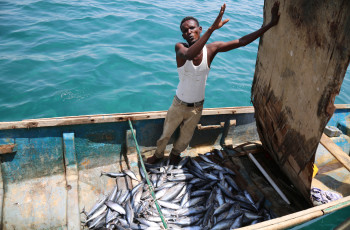 Foreign vessels catch three times more than Somali fishers © Jean-Pierre Larroque/One Earth Future