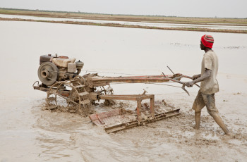 By joining together, farmers have been able to procure machinery © Ryan Vroegindewey/Syngenta Foundation