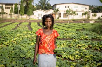In Ghana, faecal sludge is being used to produce safe organic fertiliser © Nana Kofi Acquah/IWMI