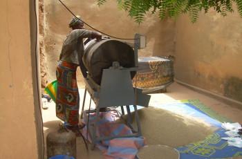 Le petit mil est l'un des ingrédients de la farine Misola acheté directement aux agriculteurs. © Misola Association