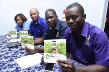 CropGuard fournit aux agriculteurs des informations en temps réel sur les nuisibles et les maladies, ainsi qu'un accès à des spécialistes. © CropGuard