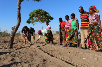 4,500 farmers in Malawi have increased their yields and improved the resilience of their livelihoods and local ecosystems using WaSA practices © CARE International