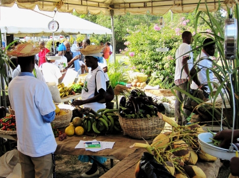 A 'safety net' programme in Haiti is enabling the poorest households to purchase healthy foods such as fruits and vegetables © Steve Goertz/USAID