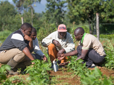 A handheld soil scanning device in Kenya is enabling over 2,900 farmers to accurately determine soil properties and nutrient requirements © SoilCares