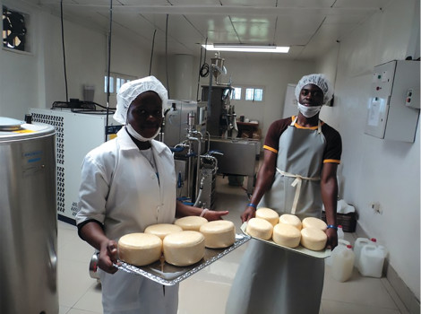 Workers processing milk into cheese and yoghurts at Tadu Dairy  © Tadu Dairy COOPERATIVE