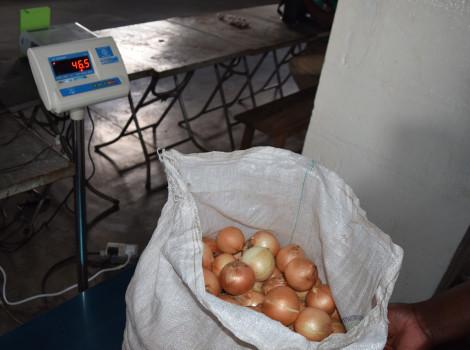 Au Zimbabwe, un système de vente aux enchères en ligne a créé un débouché et fournit un point de vente aux petits agriculteurs. © Roselinie Murota, Palladium