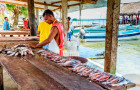 SPS guidelines are now available for countries to utilise in the production and marketing of fish and fishery products © Lucy Brown/Alamy Stock Photo
