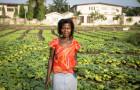 Au Ghana, des boues fécales sont transformées en engrais biologique © Nana Kofi Acquah/IWMI
