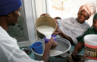 Strengthening Senegal's local milk industry will help meet consumers' needs © Kamikazz photo agency