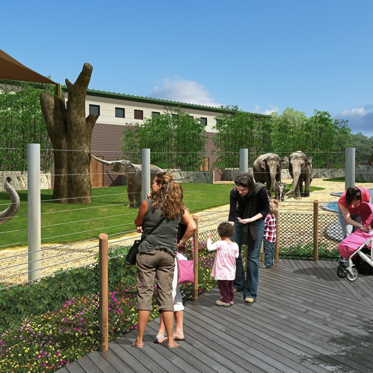 Houston Zoo Elephant expansion rendering