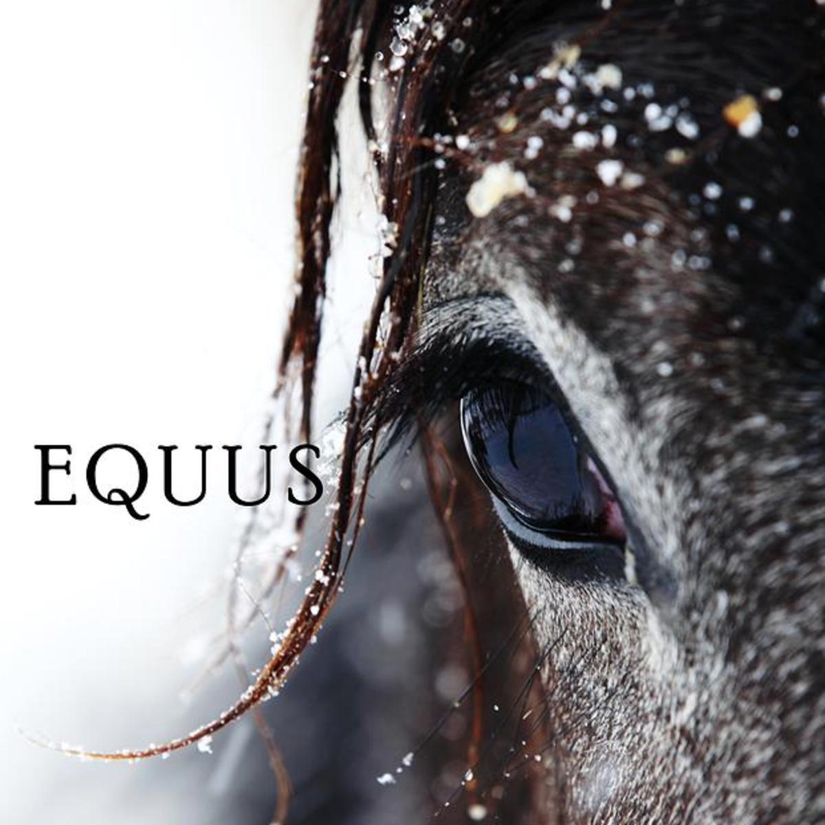 Matthew C. Logan presents Equus