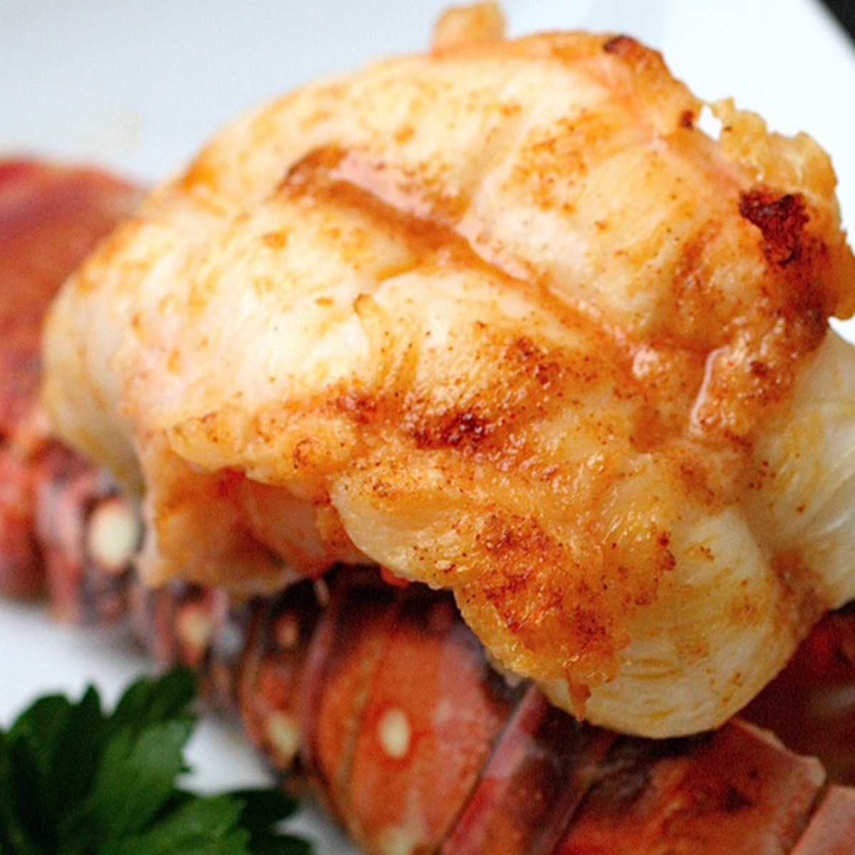 Lobster tail cooked closeup