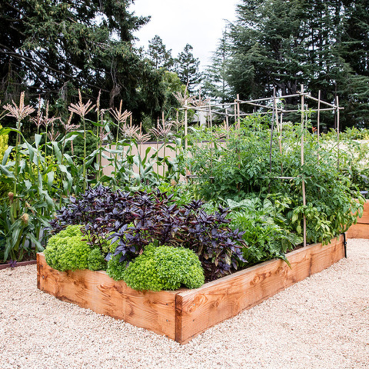 Houzz garden design 1