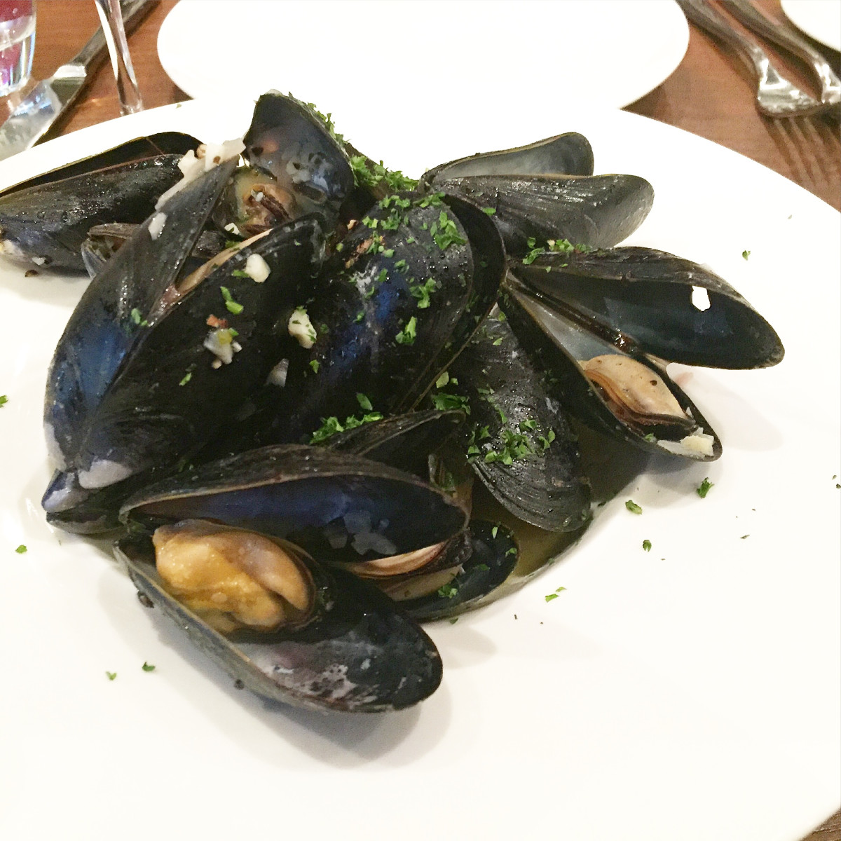 Toulouse River Oaks District mussels