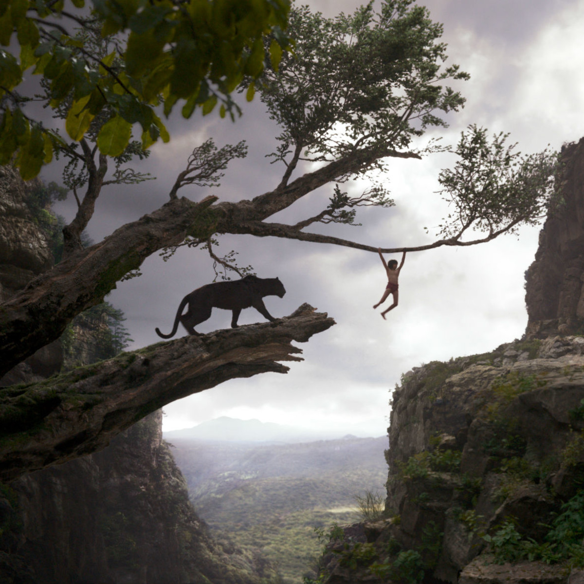 Scene from The Jungle Book