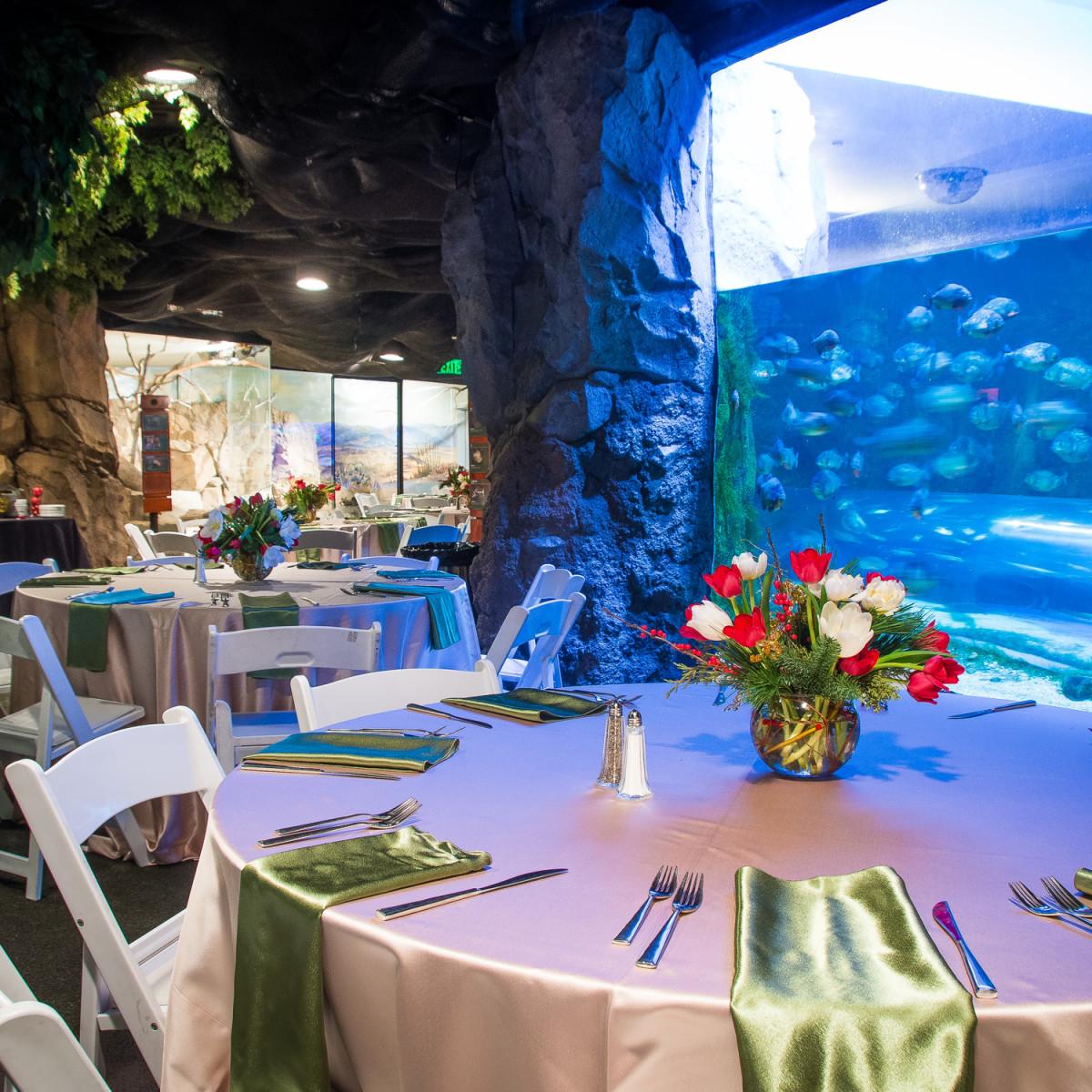Houston Zoo, Under Sea Dinner, Feb. 2016