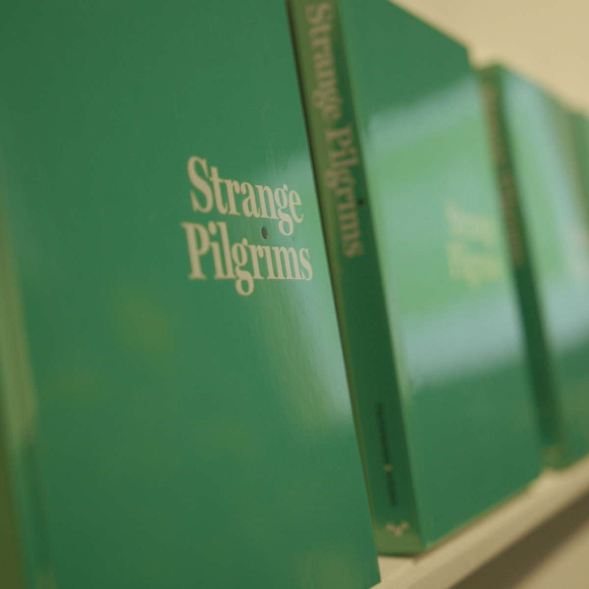 KLRU PBS Arts in Context Strange Pilgrims Contemporary Austin Gabriel Garcia Marquez book catalogue