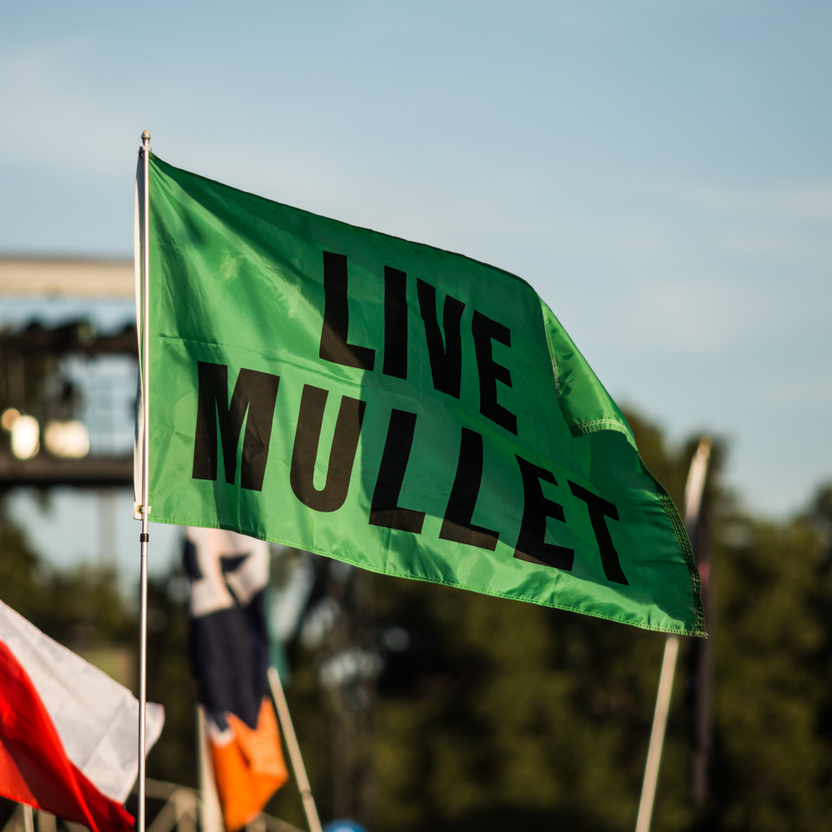 Austin City Limits Festival ACL 2015 Weekend One Best Signs Best Flags Live Mullet