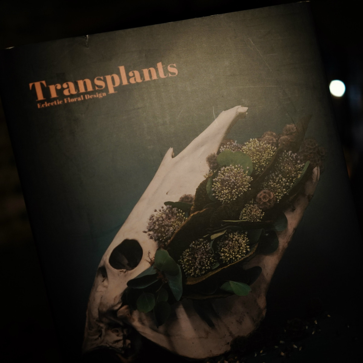 Transplants party