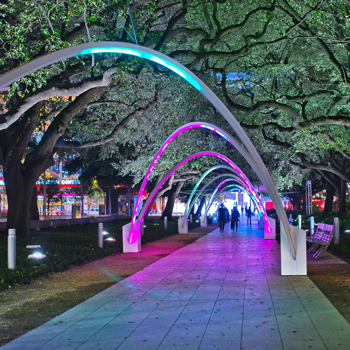Hello Trees at Discovery Green