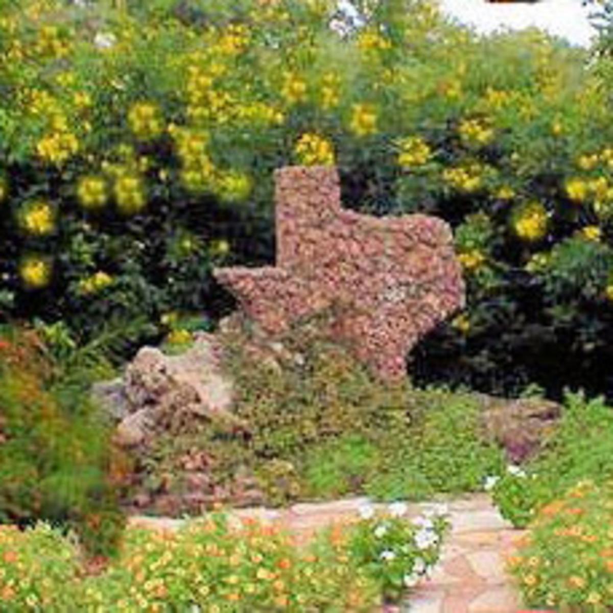 Austin_photo: Places_Outdoors_Zilker Botanical Gardens_flowers