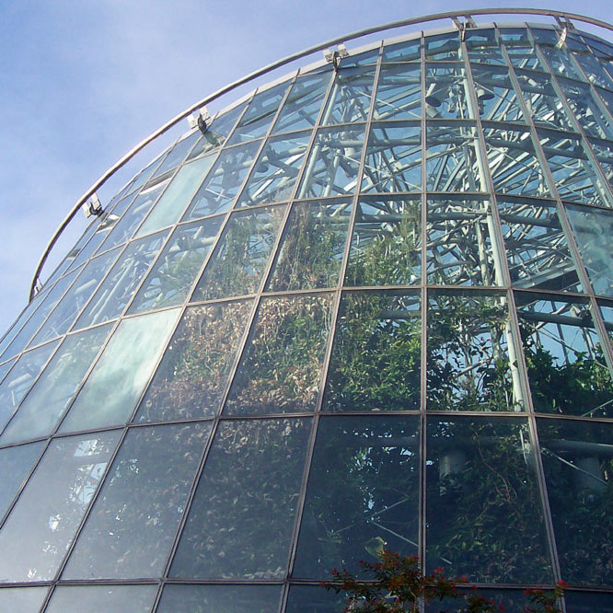 Places-A&E-Museum of Natural Science_butterfly house