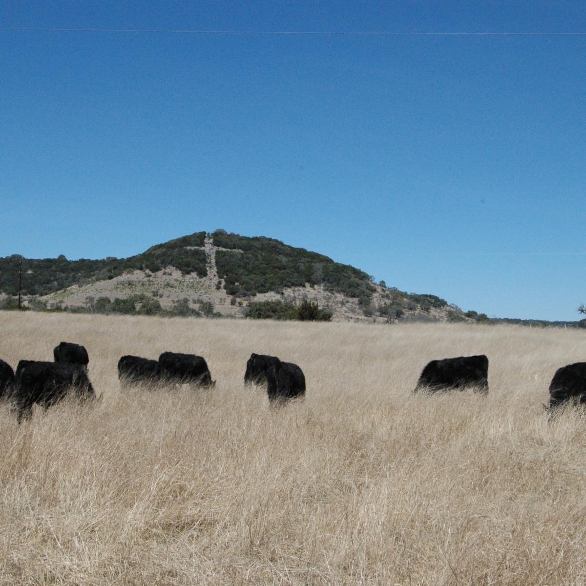 Northrup Pipe Creek Ranch