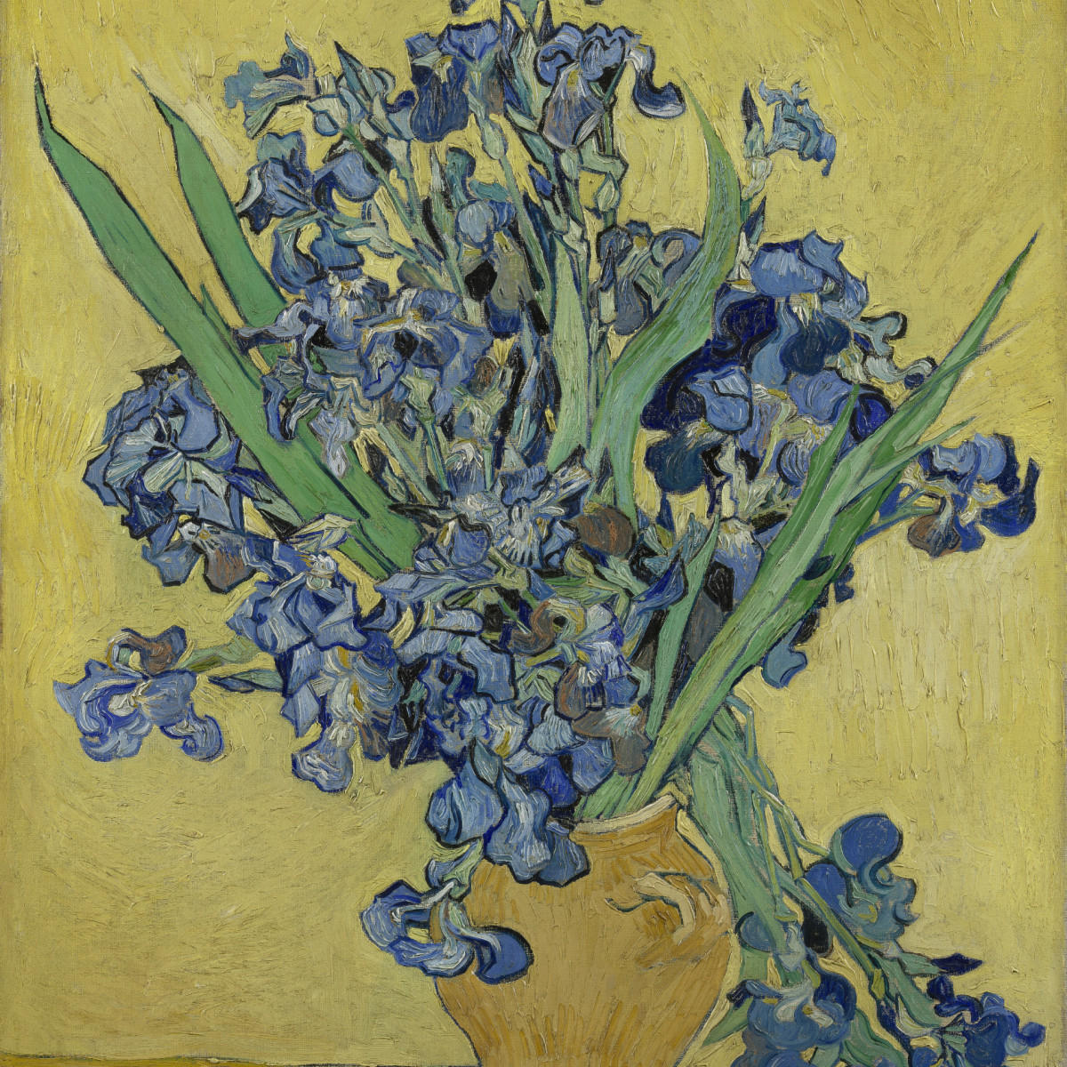 MFAH:Vincent van Gogh: His Life in Art, Irises