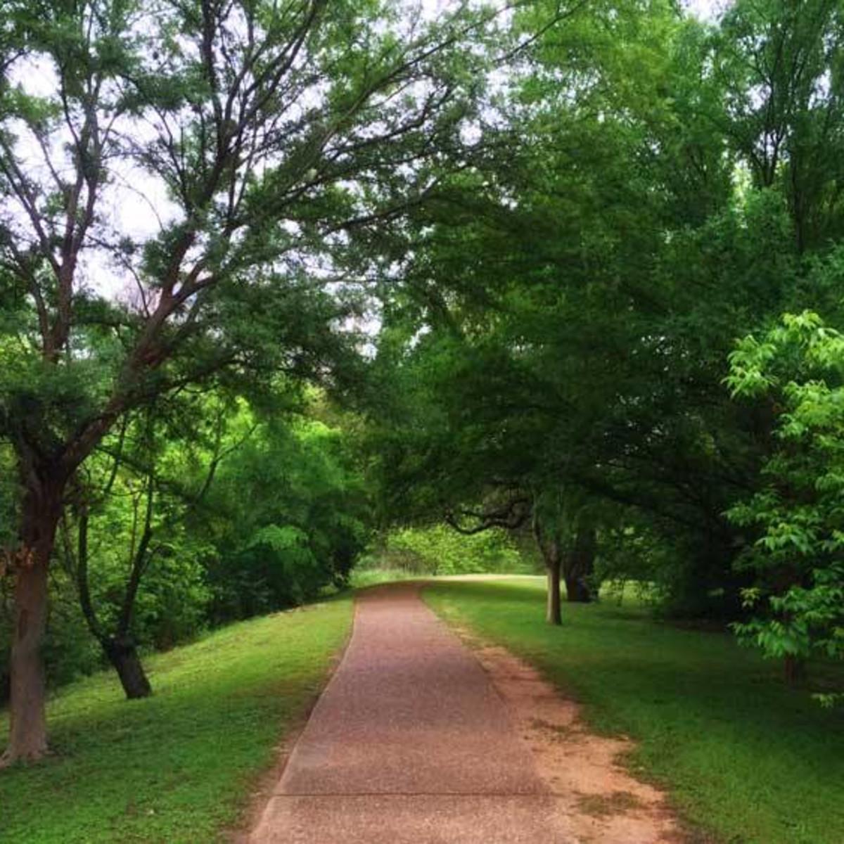 Shoal Creek Hike and Bike Trail