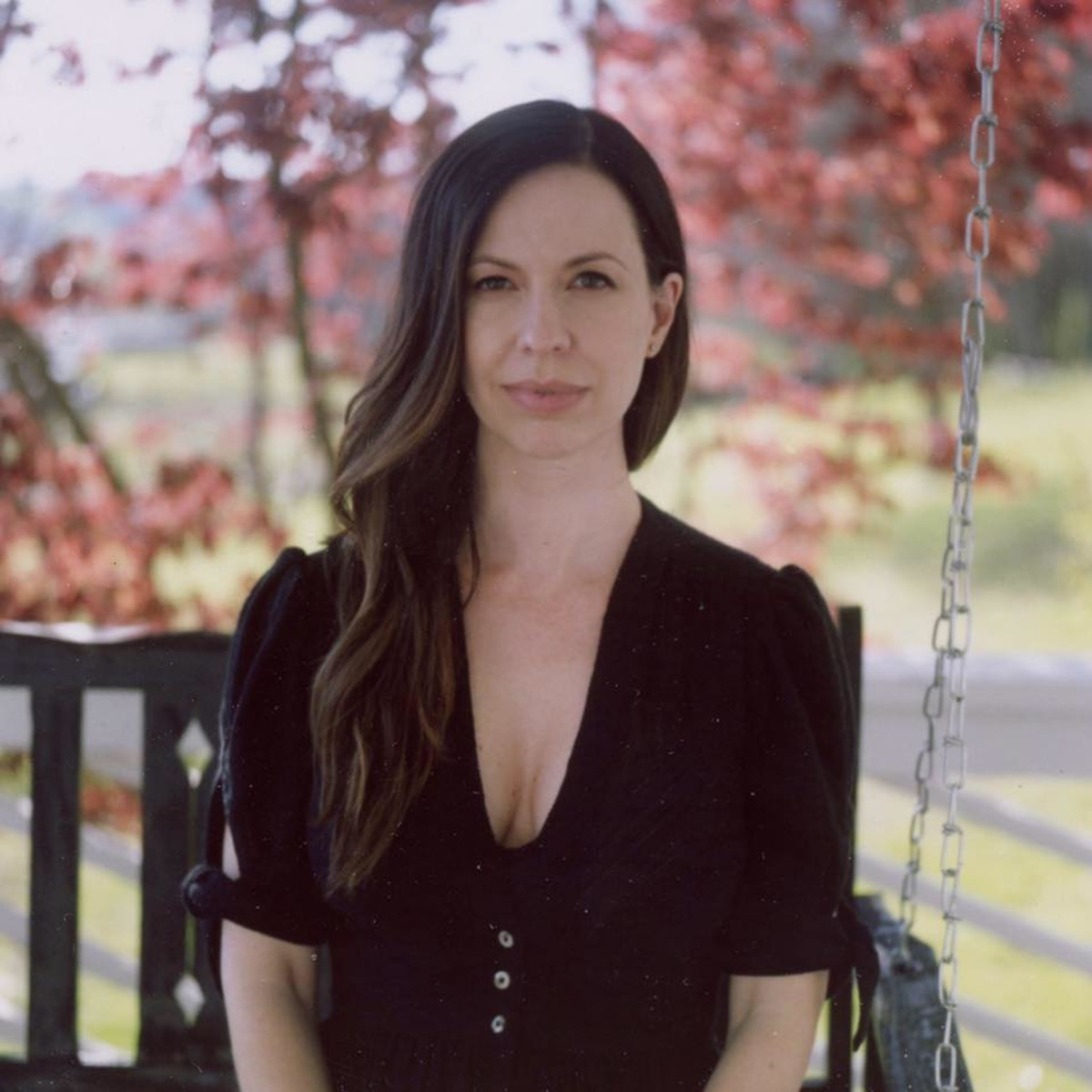 Joy Williams Civil Wars