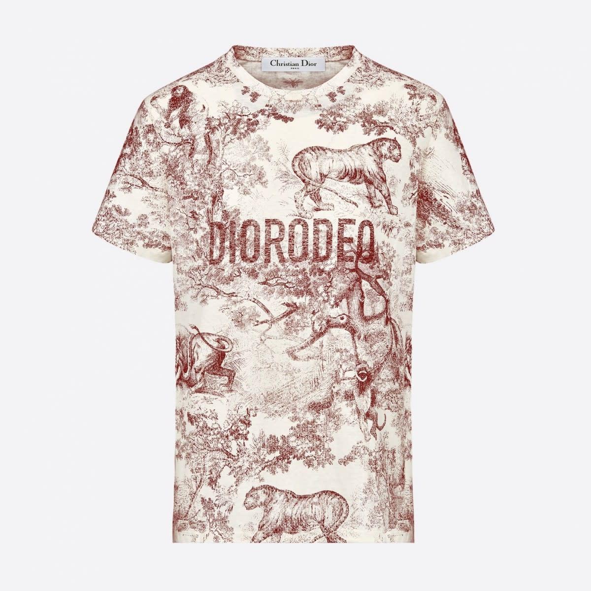Where to shop DioRodeo shirt