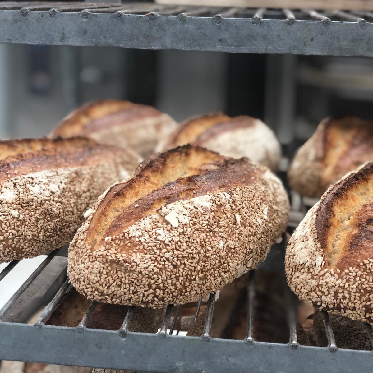 Bread Man Baking Company Kamut Sesame Sourdough