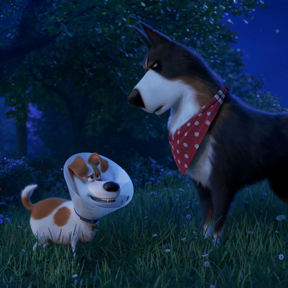 Max (Patton Oswalt) and Rooster (Harrison Ford) in The Secret Life of Pets 2