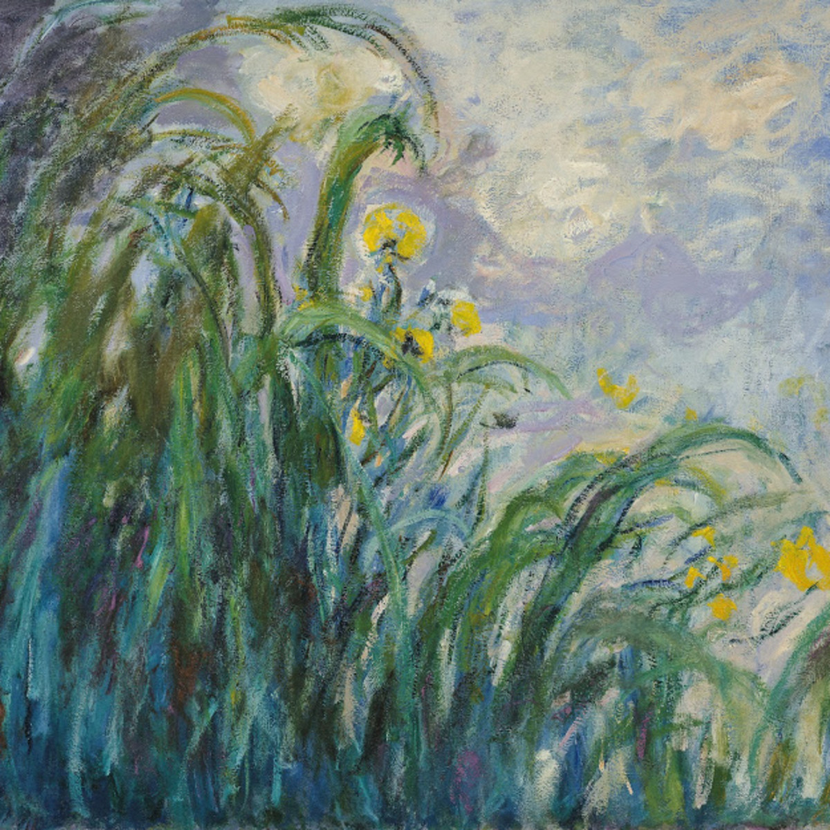 Monet, Yellow Irises