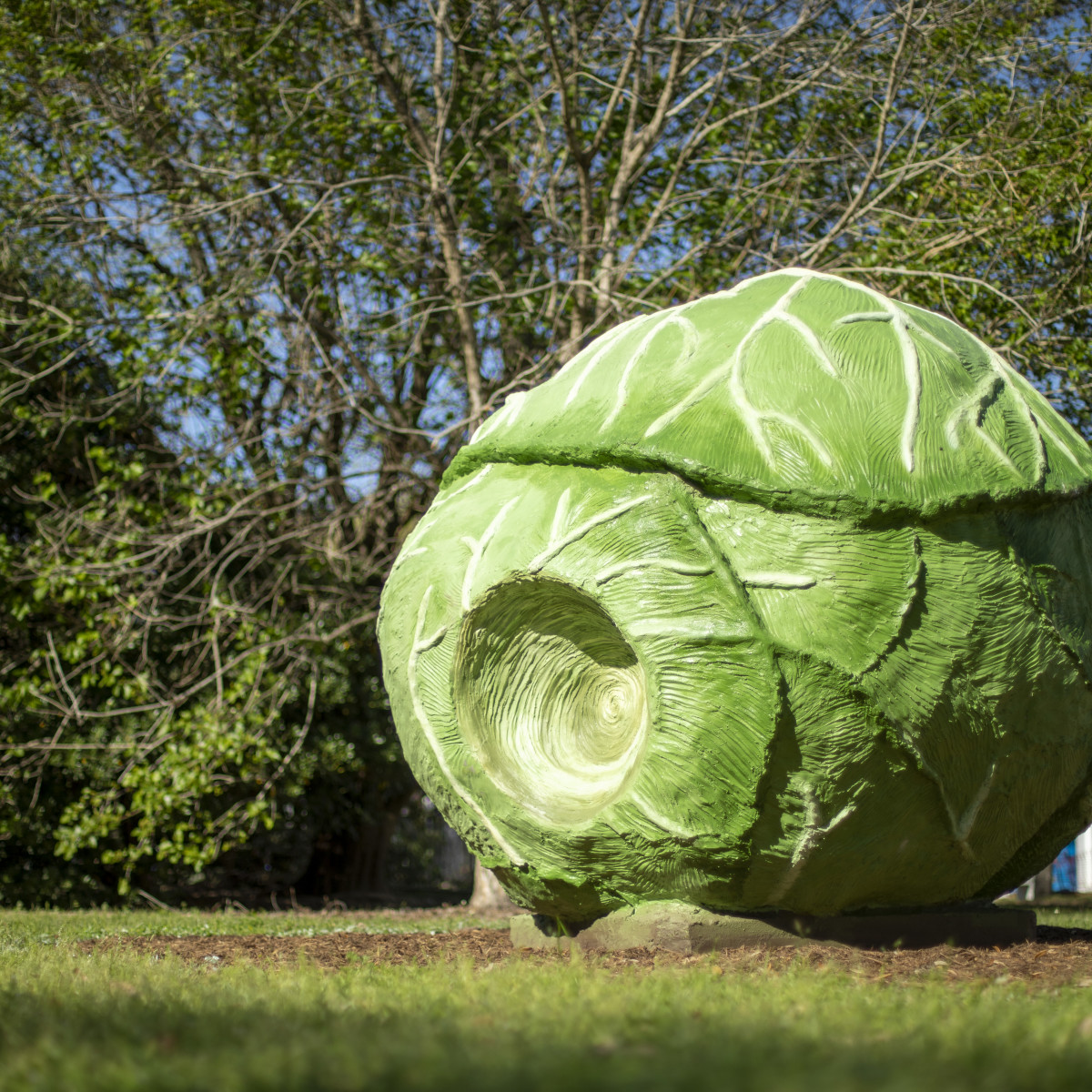 True North Heights sculptures Big Cabbage - Bill Davenport