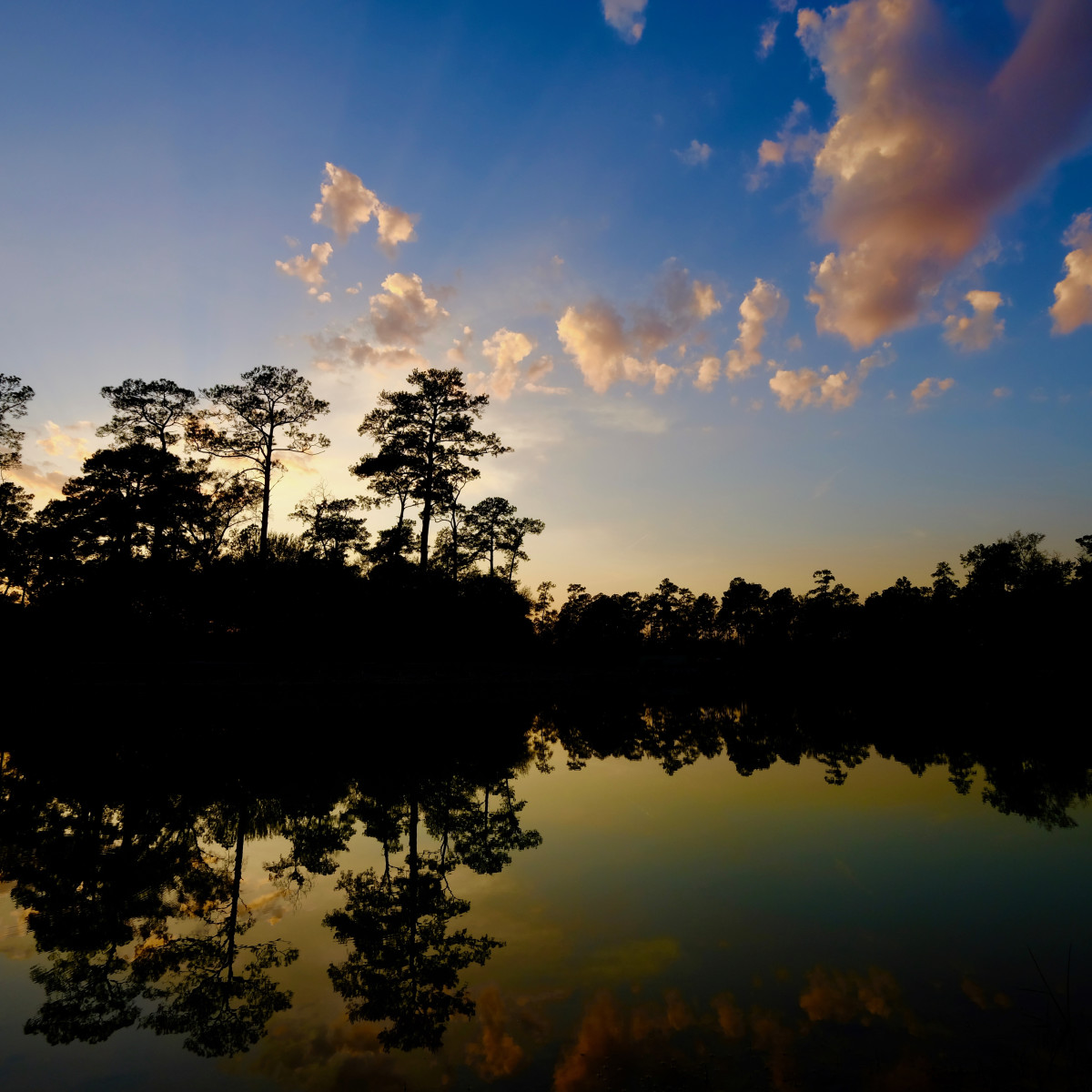 Memorial Park Eastern Glades Hines Lake dusk