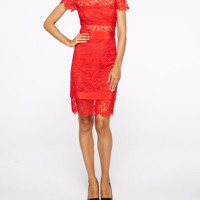 Red Lace Dress French Cuff