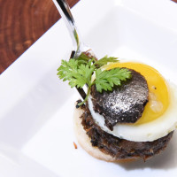 DR Delicacy Truffle Masters Le Mistral