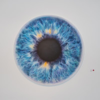 Marc Quinn eye painting