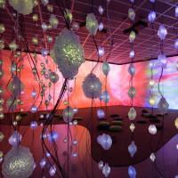 Houston, Pipilotti Rist MFAH exhibit, June 2017, floor view
