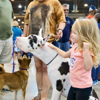 40th Houston World Series of Dog Shows