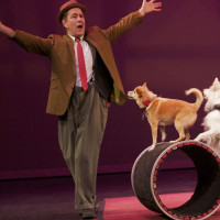 Eisemann Center presents Mutts Gone Nuts
