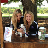 Operation Kindness presents 2017 Dog Day Afternoon