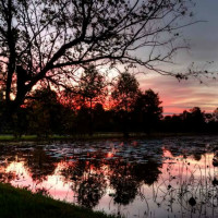 Sheldon Lake State Park & Environmental Learning Center presents Critters and Constellations