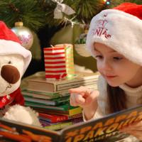 Santa Wonderland