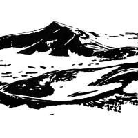 Reinhard Ziegler: Essential Landscape