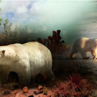 """""""Collecting Echoes,"""" """"The Taxidermist's Imaginarium,"""" and """"New Works"""" opening reception"""