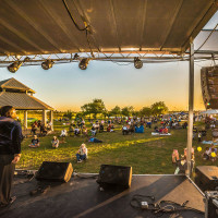 Willow Waterhole MusicFest